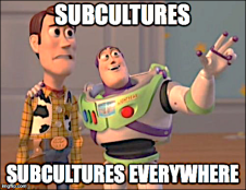 why do different subcultures exist